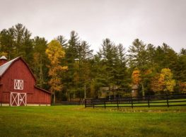 The Importance of Accurate Acreage Reporting